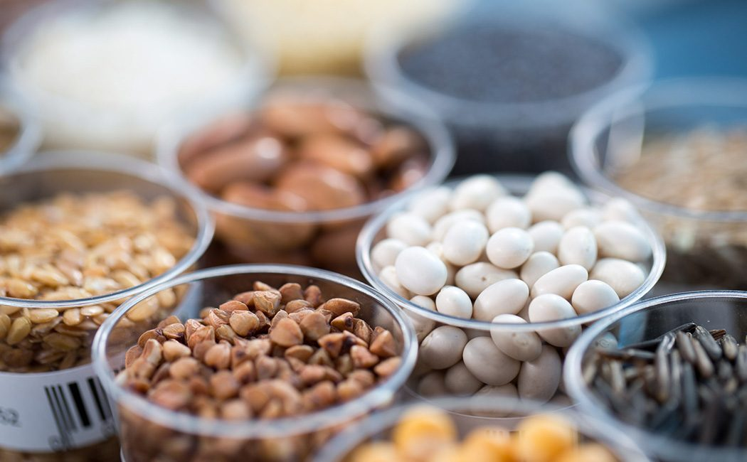 GMO seeds in tubs